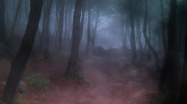 Boosters: mythes ou réalités?