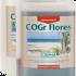 CANNA COGr Flores